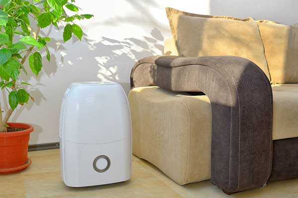 Photo of What Size Dehumidifier Do I Need in 2020 Buying Guide