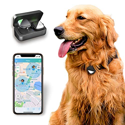 Pet GPS Tracker for the only iOS by PETFON